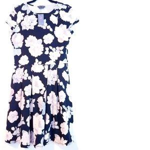 12 Tall Dorothy Perkins Fit & Flare Dress NWT